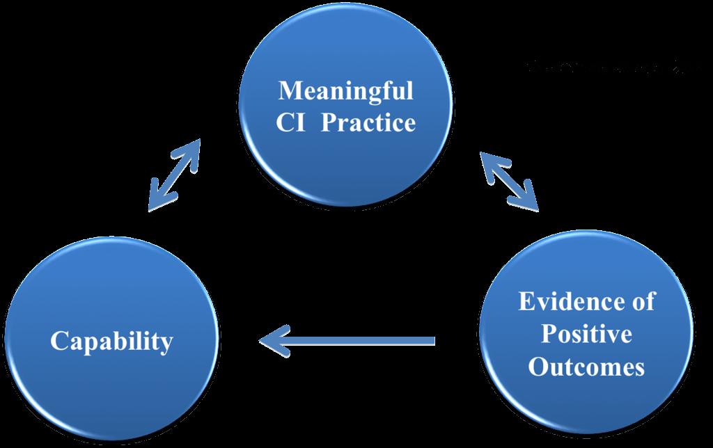 CPO Model (Capability-Practice-Outcome)