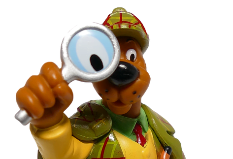 Scooby Doo Leadership